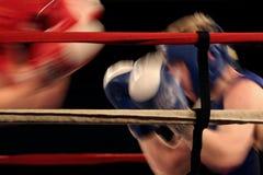 Boxeadores Foto de archivo