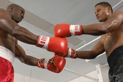 Boxeadores antes del inicio de un partido Fotos de archivo