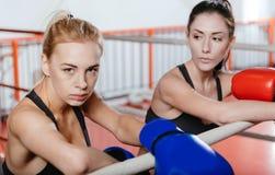 Boxeadores bastante de sexo femenino que presentan en un anillo Imágenes de archivo libres de regalías