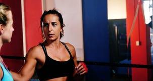 Boxeadores de sexo femenino que obran recíprocamente con uno a durante rotura almacen de metraje de vídeo