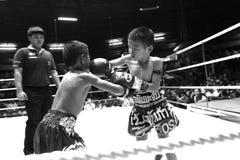 Boxeadores jovenes tailandeses que luchan en el ring de boxeo Foto de archivo