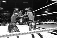 Boxeadores jovenes tailandeses que luchan en el ring de boxeo Fotografía de archivo libre de regalías