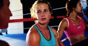 Boxeadores que obran recíprocamente con uno a durante rotura metrajes