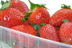 Boxed Strawberries. On a white background Stock Image