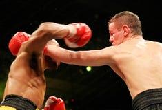 Boxeo Imagen de archivo libre de regalías