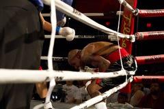Boxeo aficionado y profesional Imagen de archivo libre de regalías