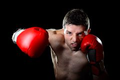 Boxeo agresivo del hombre del boxeador en los guantes que luchan que lanzan el sacador enojado del gancho derecho Foto de archivo libre de regalías