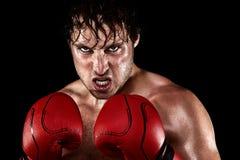 Boxeo del boxeador Imagenes de archivo