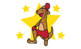 Boxeo del canguro Fotos de archivo libres de regalías