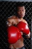 Boxeo del hombre. Imagen de archivo