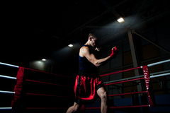 Boxeo del hombre en gimnasia Imagen de archivo libre de regalías