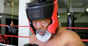Boxeo del hombre mayor en el estudio 4k de la aptitud almacen de metraje de vídeo