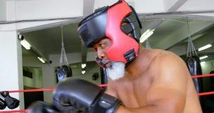 Boxeo del hombre mayor en el estudio 4k de la aptitud almacen de video