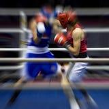 Boxeo en un anillo Foto de archivo libre de regalías