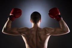 boxeo La parte posterior del combatiente Tiro del estudio fotografía de archivo