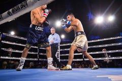 Boxeo profesional en Phoenix, Arizona Fotos de archivo