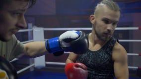 Boxeo profesional, lucha del deportista con los puños en guantes de boxeo mientras que entrenamiento en el anillo en el primer de almacen de metraje de vídeo