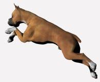 Boxer - 02. Boxer in motion. Jumping upward Stock Illustration