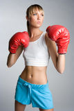 Boxer Royalty Free Stock Image