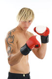 Boxer. Man boxer on white background.Possible financial context.On white background Royalty Free Stock Image