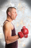 Boxer. Muscular young man in boxing gloves, ready to fight Royalty Free Stock Image