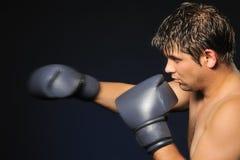 The boxer Stock Photos