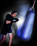 Boxer Stock Photos