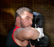 The boxer. Portrait of a boxer in fighting stance Royalty Free Stock Photos