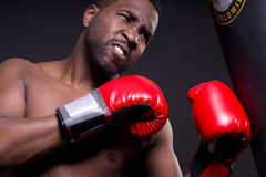 Angry Boxer Red Boxing Gloves Heavy Bag Stock Photo