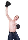 The boxer Royalty Free Stock Image