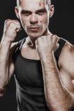 boxer fotografie stock