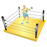 Boxer Royalty Free Stock Photo