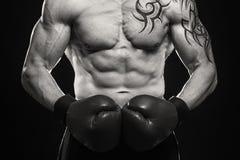 boxer fotografia stock libera da diritti