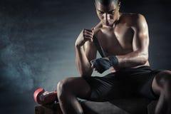 boxer fotografie stock libere da diritti