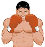 Boxer. Vector illustration Isolated on white boxer Stock Photo