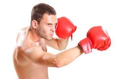 Boxer in action Royalty Free Stock Photography