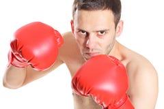 Boxer in action Stock Photos