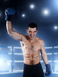 Boxer with an angry face has raised a hand up. Royalty Free Stock Photos