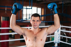 Boxer with an angry face has raised a hand up. Stock Image