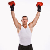 Boxer with arms raised. Wearing gloves Royalty Free Stock Photo