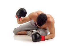 Boxer aus den Grund Stockfoto