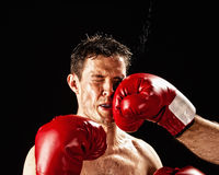 Boxer being hit. Boxer actually being hit, studio shot Royalty Free Stock Photography