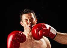 Boxer being hit Stock Photos