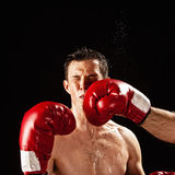 Boxer being hit. Boxer actually being hit, studio shot Stock Photography