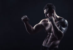 Boxer on black Stock Images