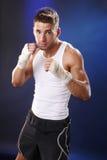 Boxer on blue Royalty Free Stock Photo