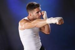 Boxer on blue Stock Photo