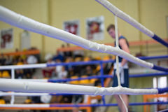 Boxer in the blue corner Royalty Free Stock Photography