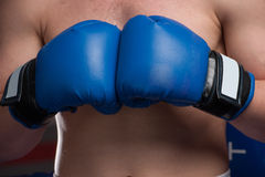 Boxer with blue gloves in dark room. stock images