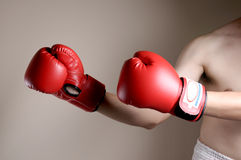 Boxer on boxing Stock Photo